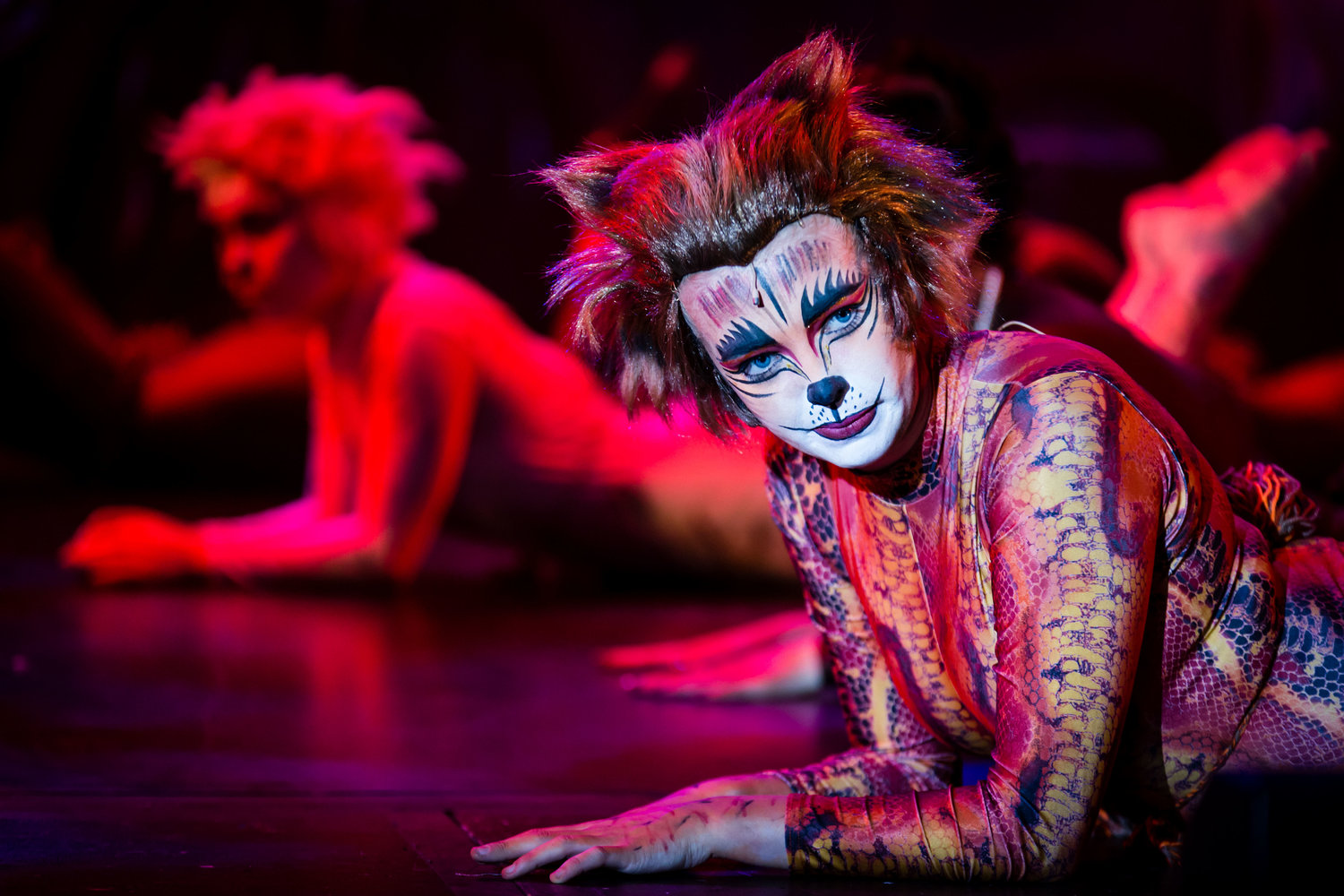 CATS the Musical   Wing It Theatre Group, Coventry, August 2017