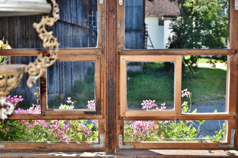 screw_the_average_house_sit_window_view.jpg