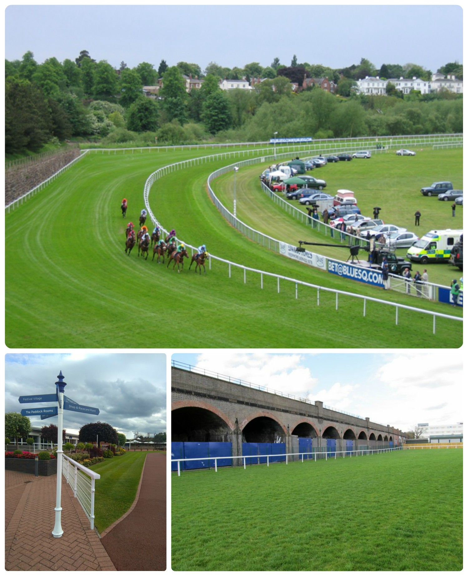 screw_the_average_chester_racecourse_collage.jpg