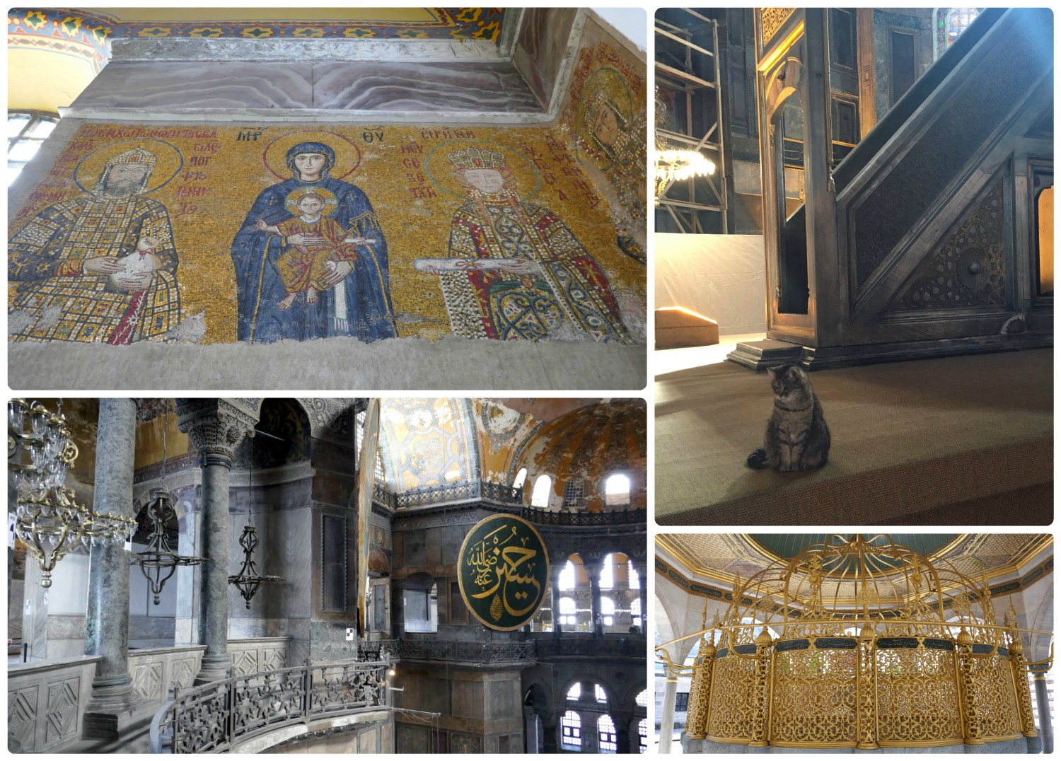 Clockwise: Intricate mosaic work that has been uncovered, cats are everywhere in Istanbul - even inside the Hagia Sophia, an ablution fountain in the courtyard of the Hagia Sophia, the view from the second floor of the Hagia Sophia.