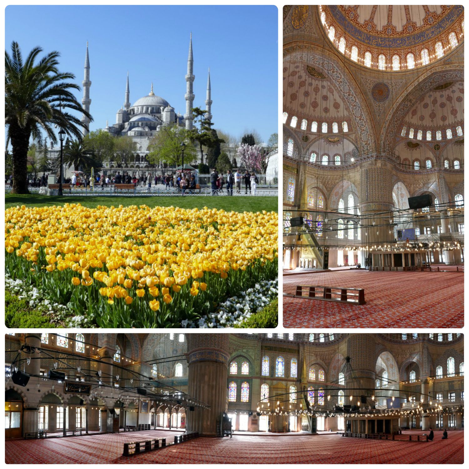 The exterior and interior of the Blue Mosque.