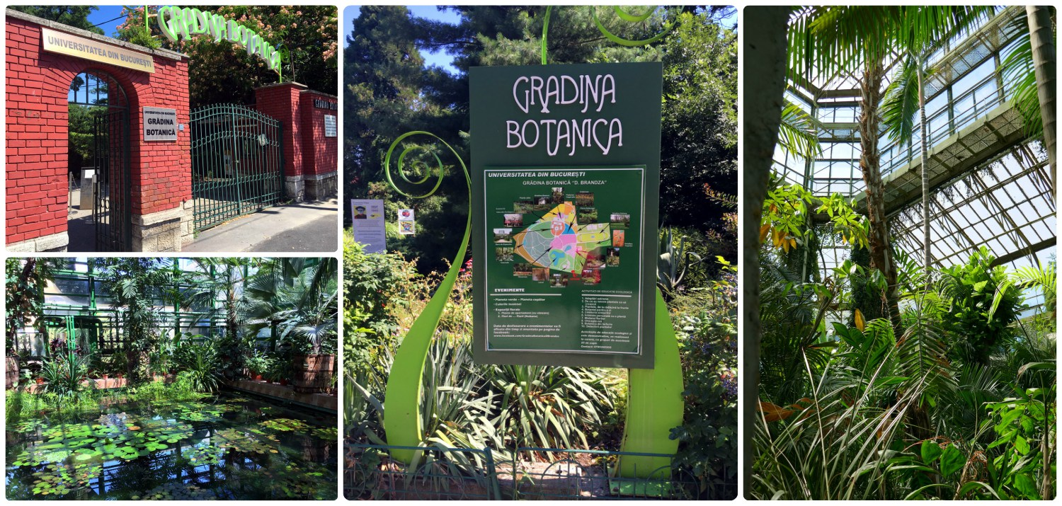 The Botanical Garden was expansive and beautiful. When visiting, be sure not to miss the green house!