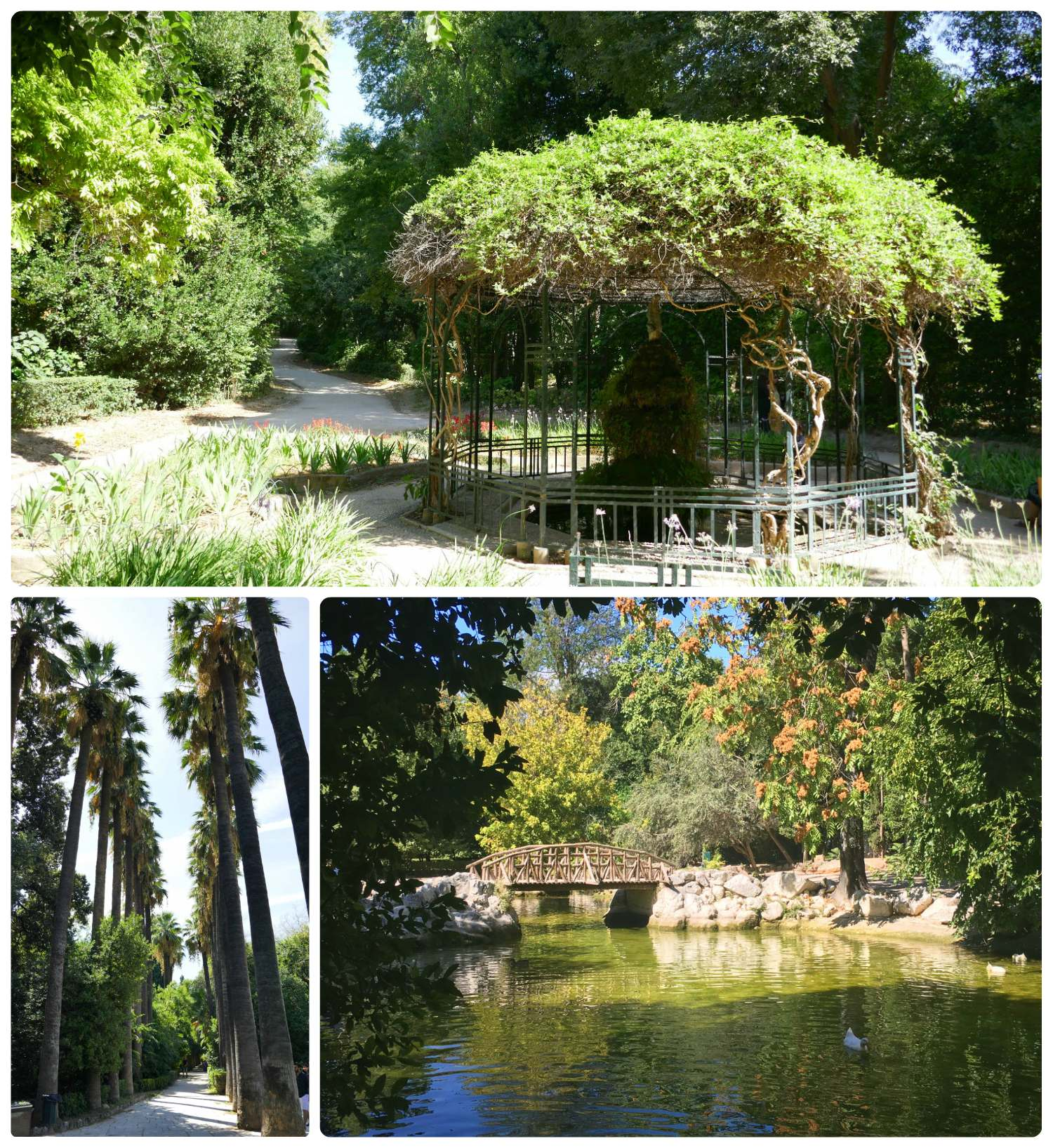 The National Garden in Athens is huge and has many different and interesting landscapes within it!