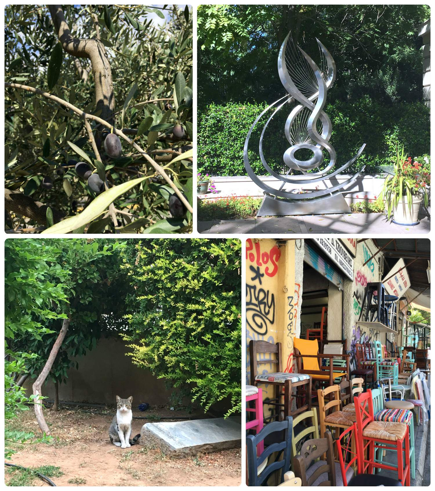 Clockwise (from the top left): It was no surprise that we spotted olive trees in Athens, a piece of at work in front of the B&M Theocharakis Foundation for the Fine Arts and Music, a colorful shop that caught our attention, there were cats all over Athens (it reminded us of  Istanbul )!