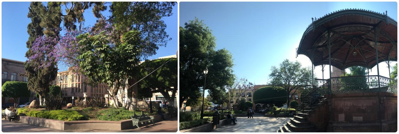 Jardin Zenea (Zenea Garden) in Santiago de Queretaro, Mexico.