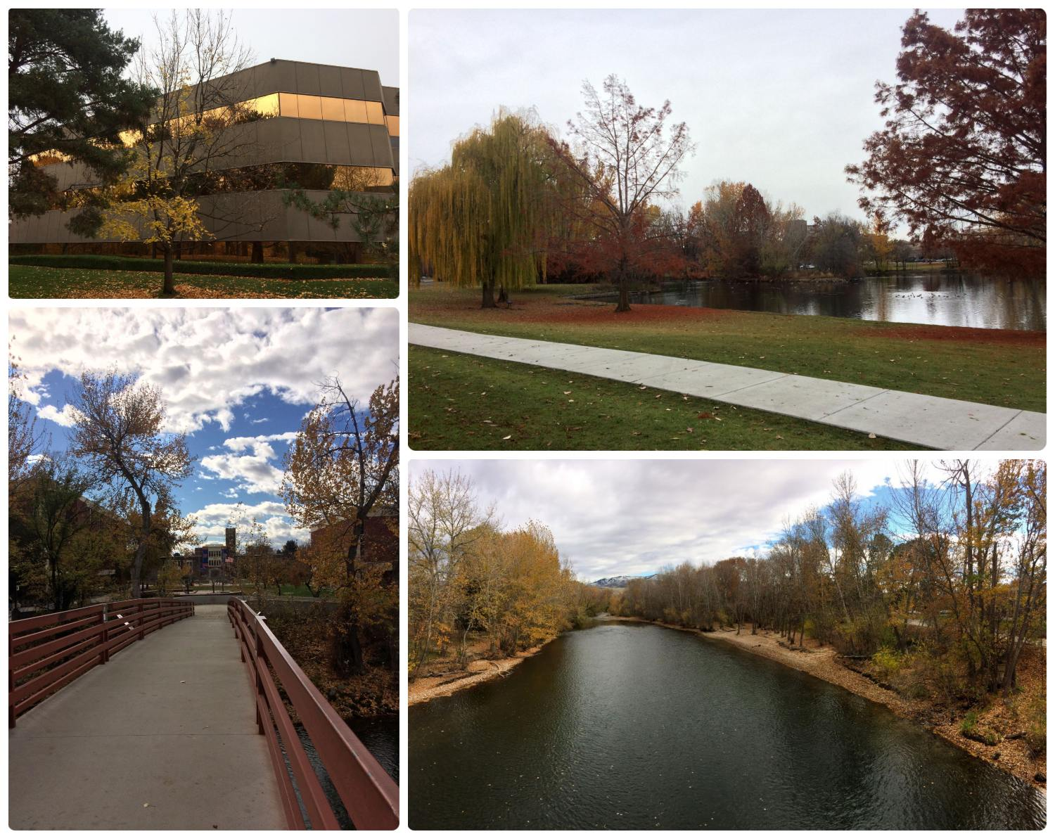 The scenery in and around downtown Boise, Idaho. (The Green Belt, Julia Davis Park, the Boise River, and Boise State University.)