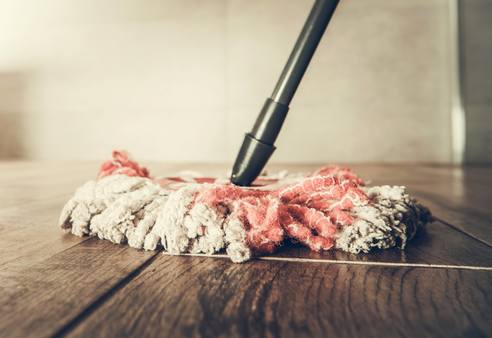 house sitting cleaning day to day tips to make it easier faster and leave a good impression for homeowners. Ultimate house sitting guide how to house sitting job instructions best sits travel cheap free budget travel hacking how to house sit full time long-term travel what is house sitting is house sitting right for you