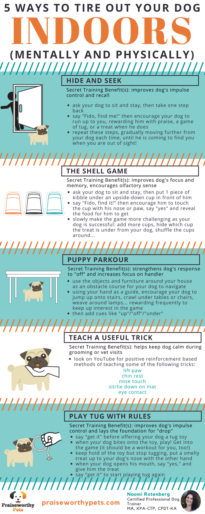 5 ways to tire out your dog.png