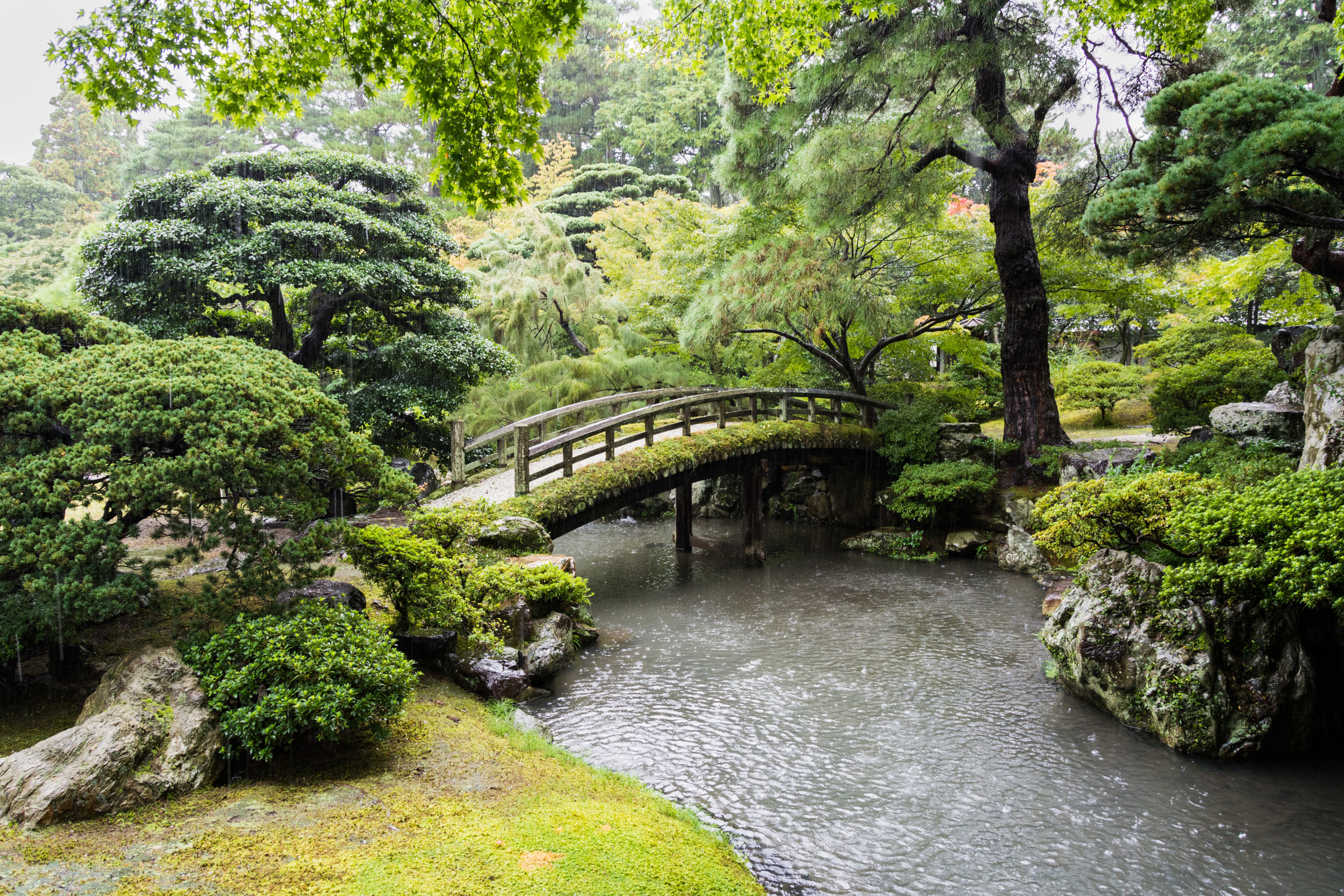 Kyoto was beautiful, even in the rain (and it rained a lot).
