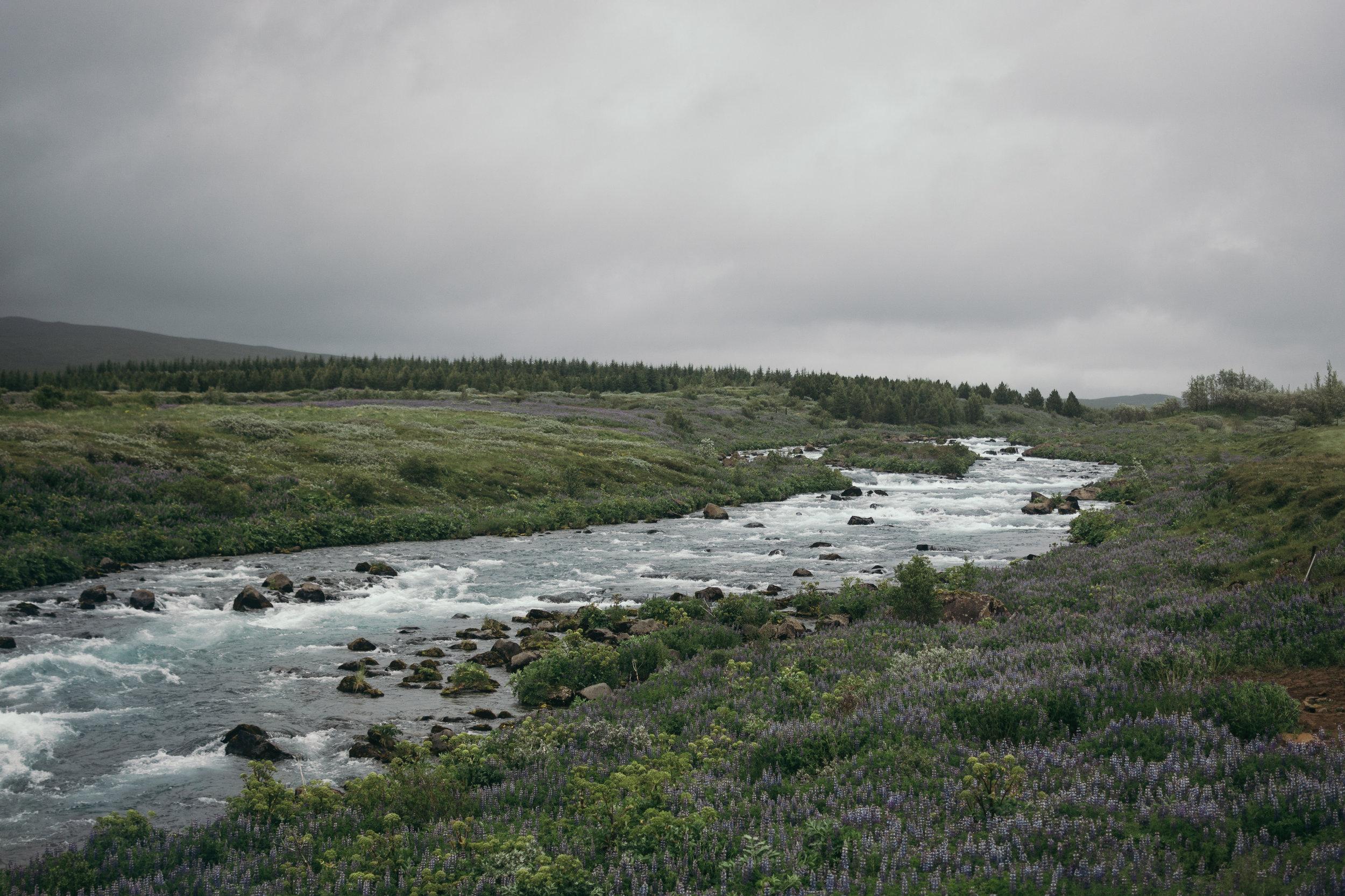 Chantal van den Broek, vakantie IJsland 2018 (46).jpg