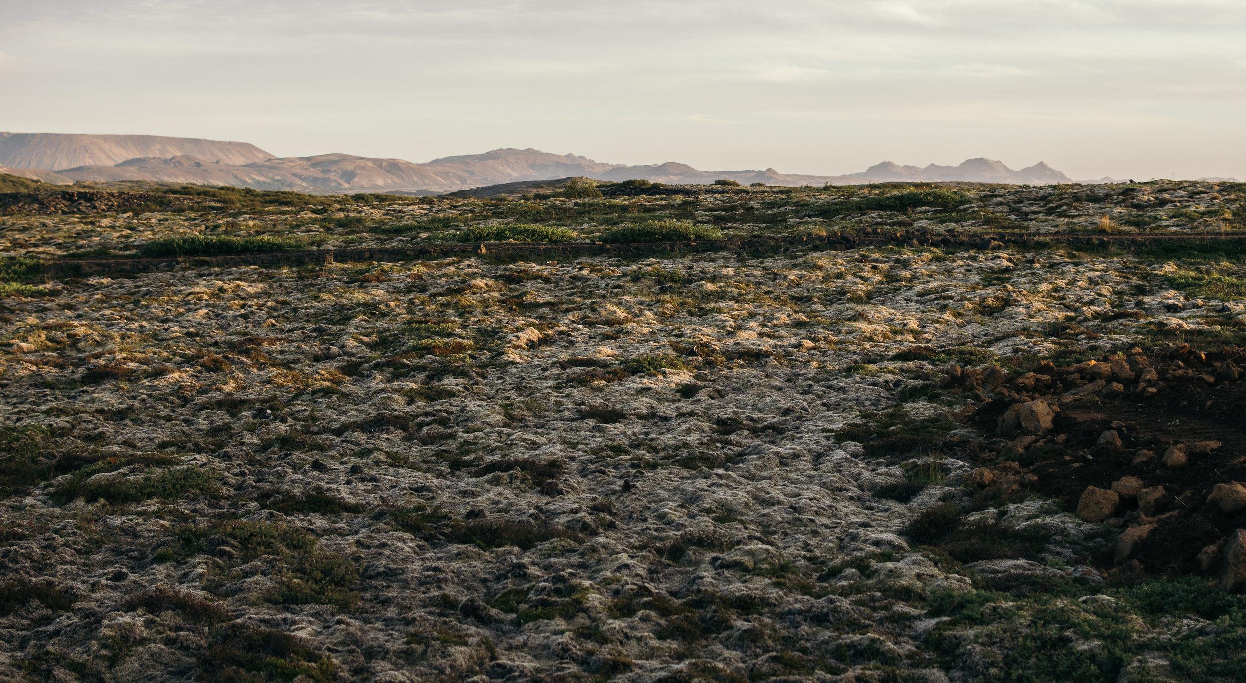 Chantal van den Broek, vakantie IJsland 2018 (443).jpg