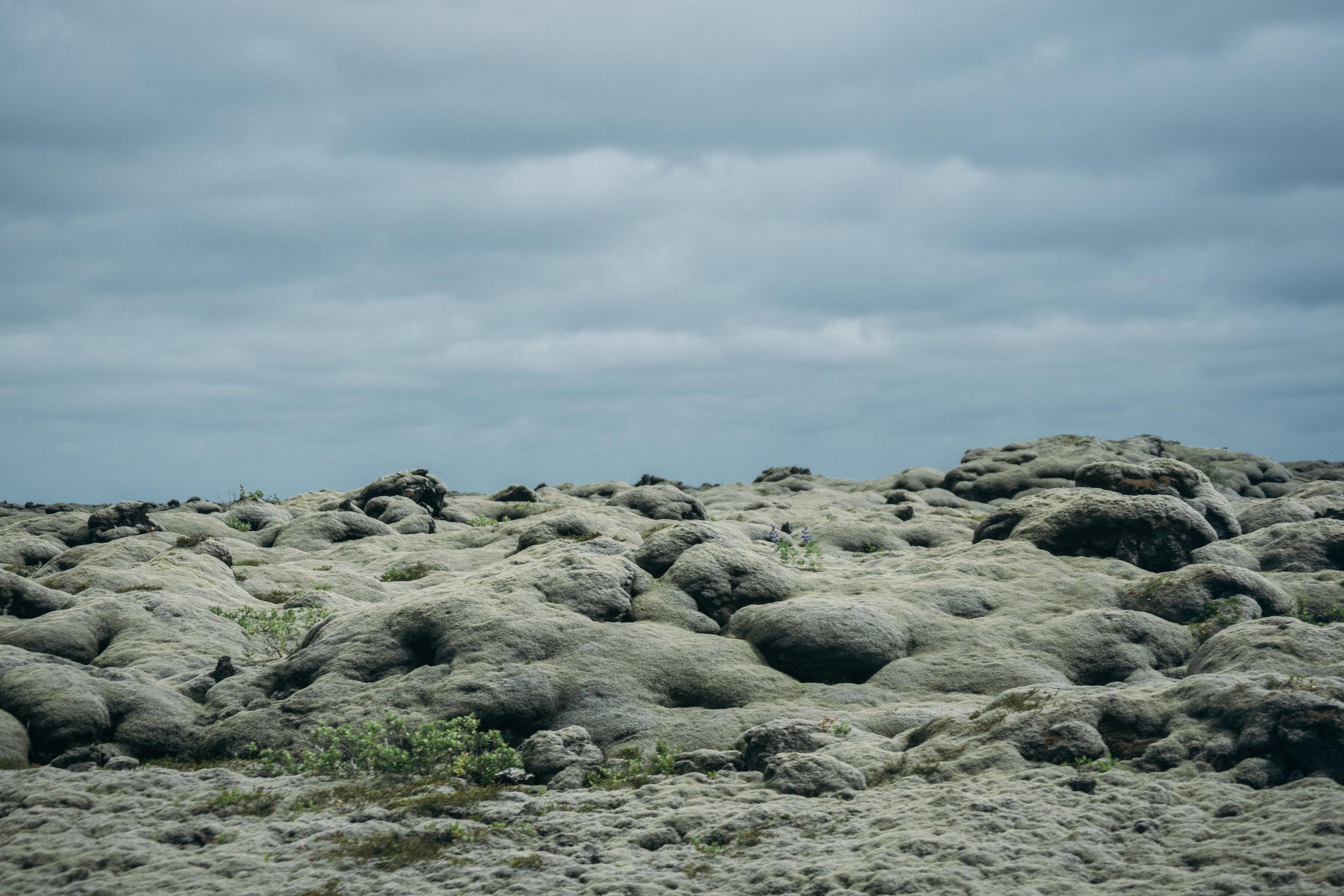 Chantal van den Broek, vakantie IJsland 2018 (109).jpg