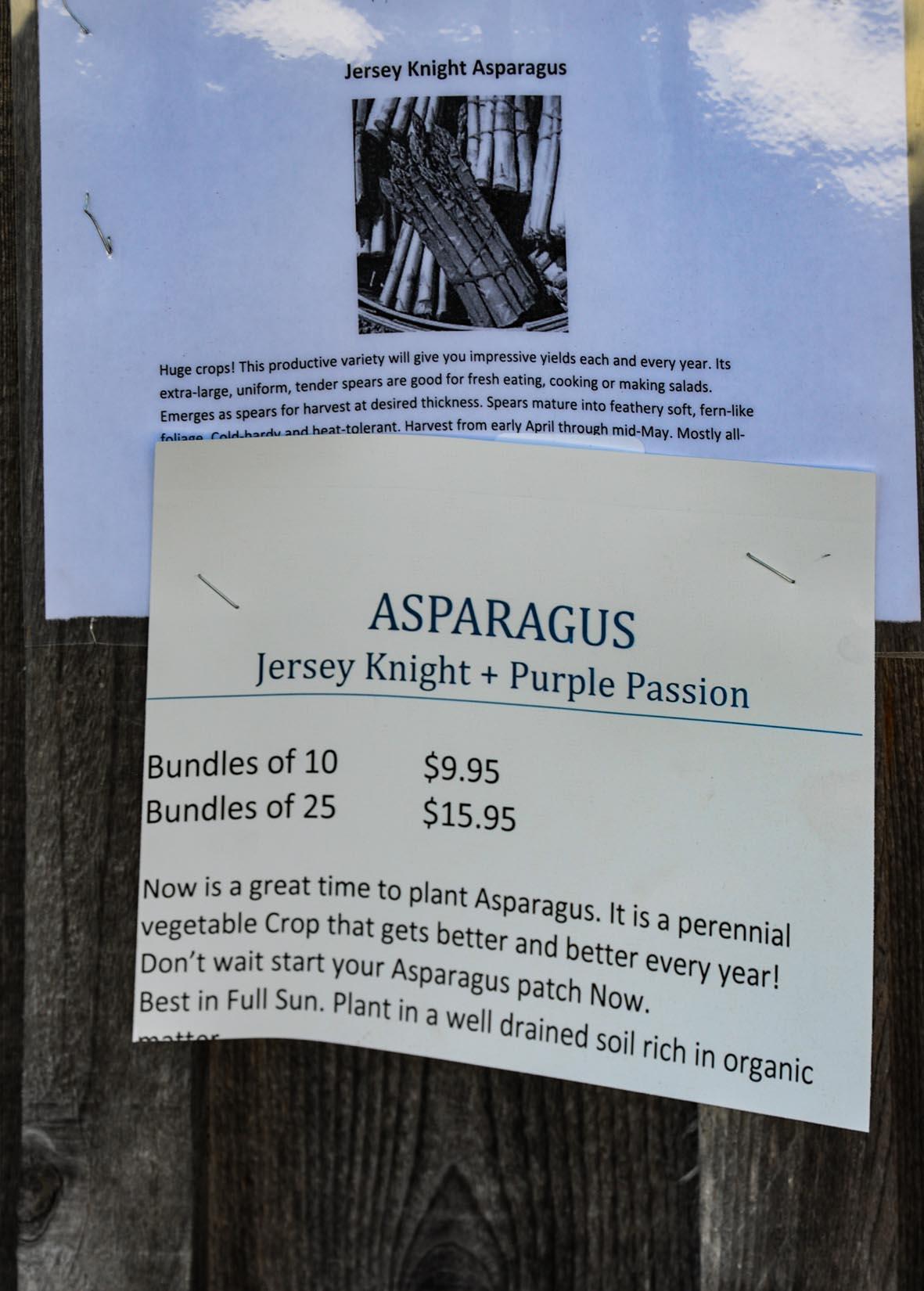 Asapagus info