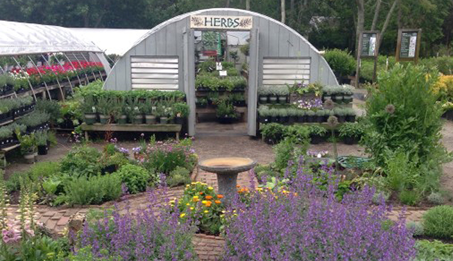 Vineyard Gardens Herb House