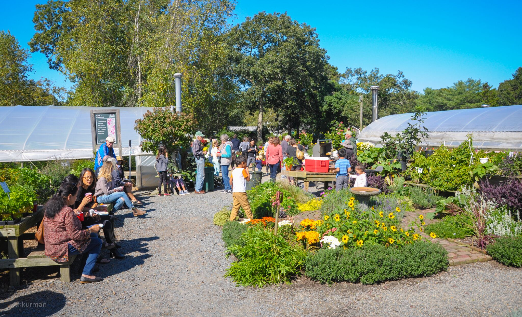 Dining al fresco in the Herb display garden. A well attended event with perfect weather!