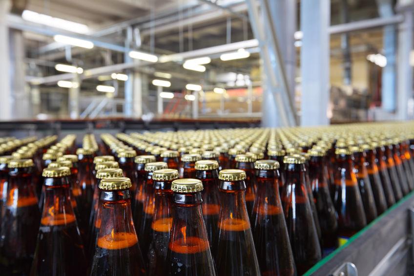 beer-insurance