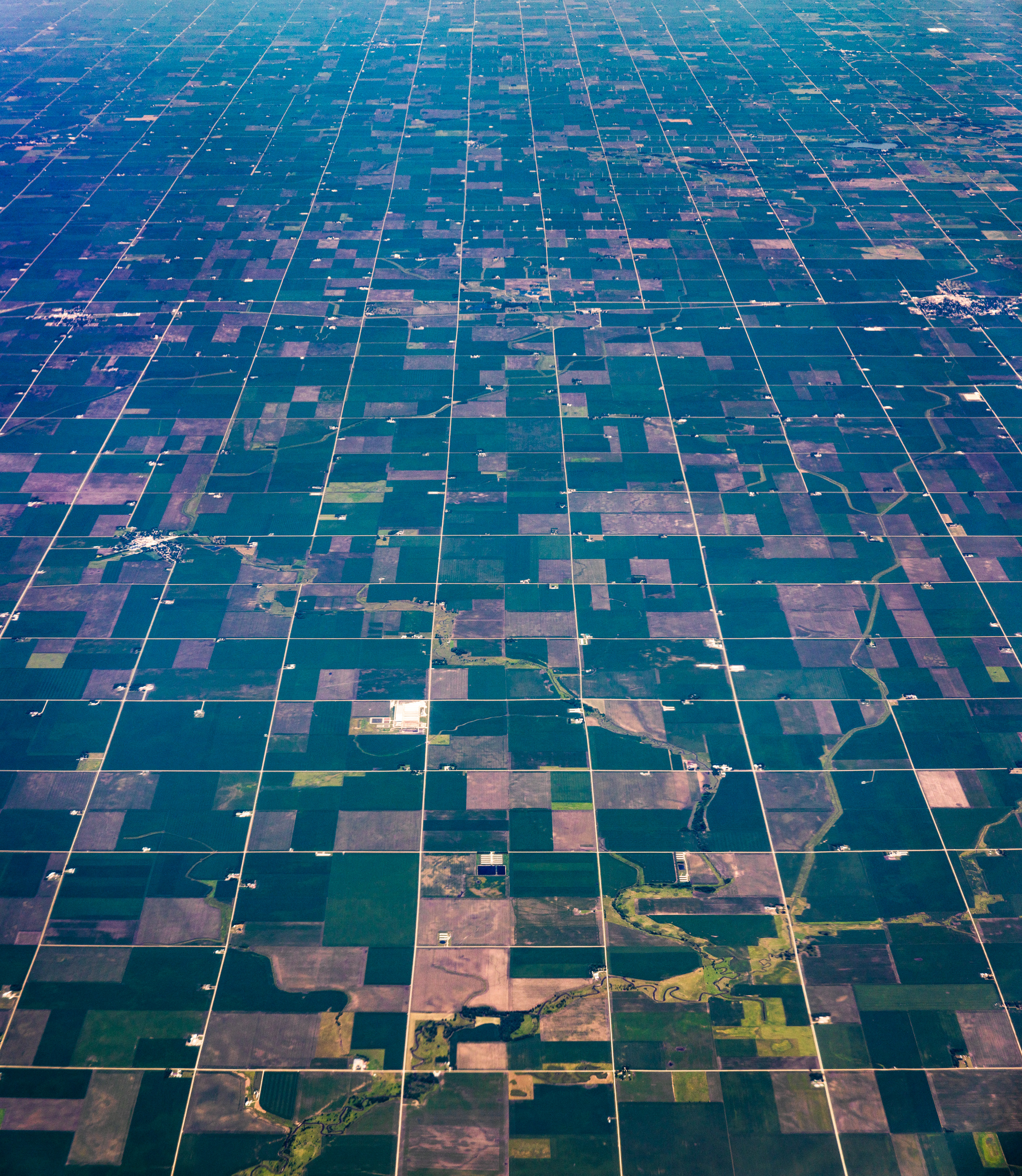 Aerials for Bannon 2019 (2.5k)-15.jpg