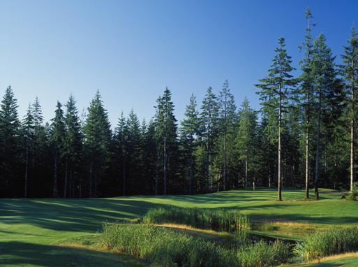 McCormick Woods #12.1.jpg