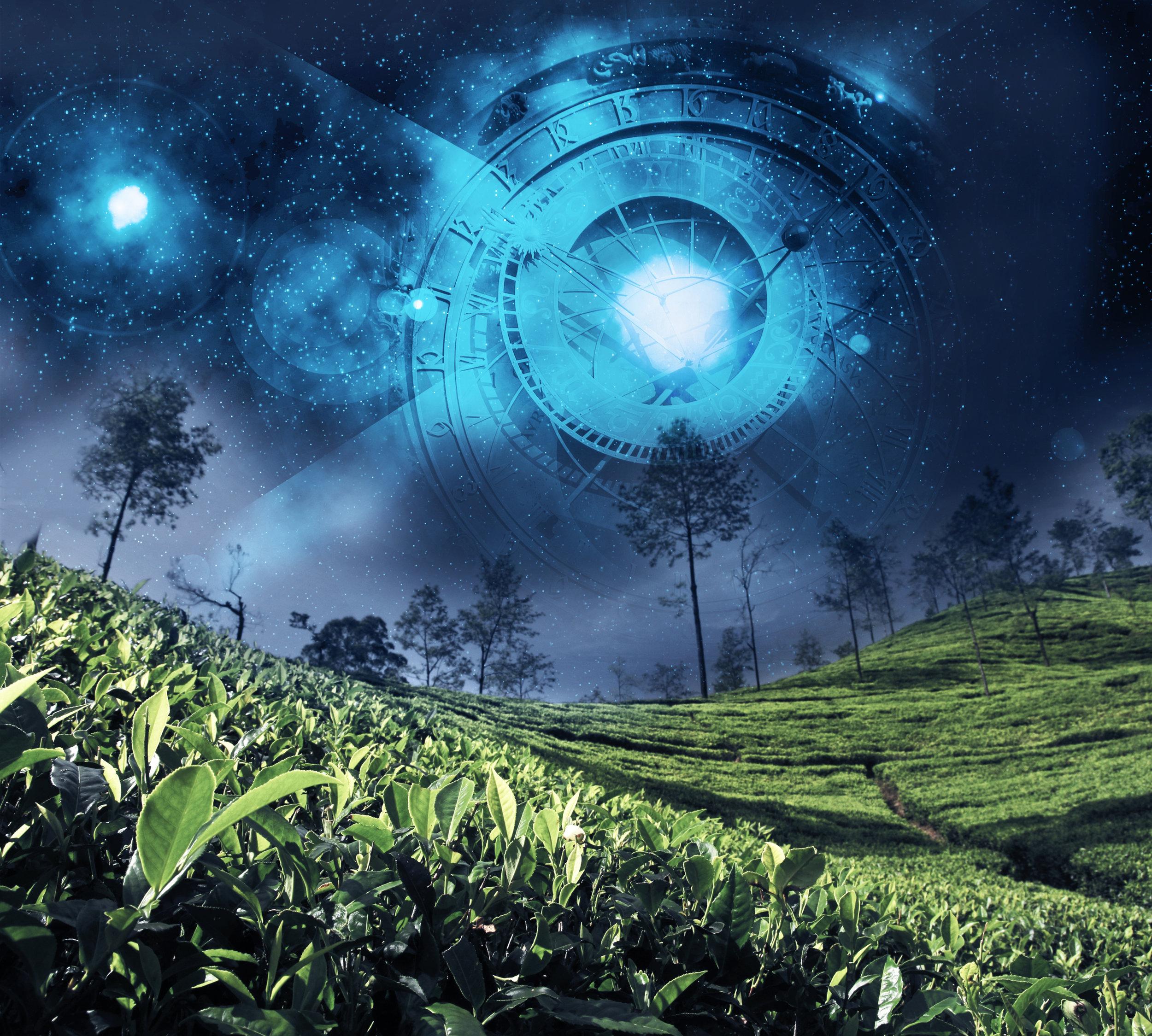 dreamstimemaximum_44814242Mod6.jpg