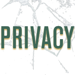 privacy_icon.jpg