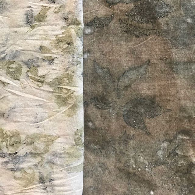 Results of a day's Eco Printing on cotton... Silver Birch, Virginia Creeper, Rose, Smokebush, scraps of onion skins and used coffee grounds... We'll be doing this and much more at my next workshop on the 14th September @3rdrailprintspace as part of @peckhamfestival  See link in bio for more info or to book a place.. . . . #ecoprint #ecoprinting #bundledyeing #naturaldye #sustainablefashion #sustainabletextiles #craft #slowfashion #reuse #nature #leaves #plantdyes #workshops #londonworkshop #peckhamfestival2019 #printmaking