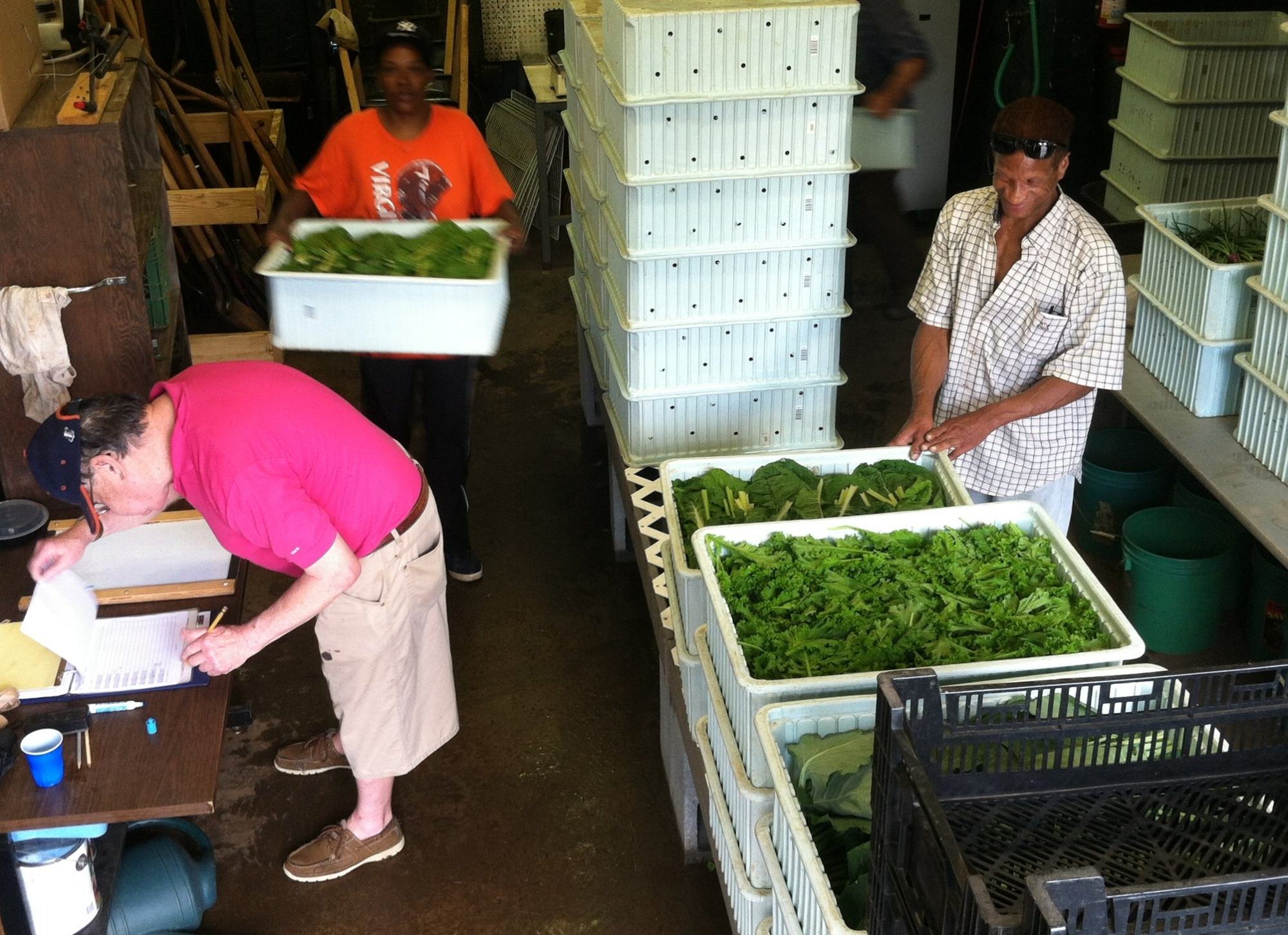 Volunteers and staff packing up for market day - May 2015