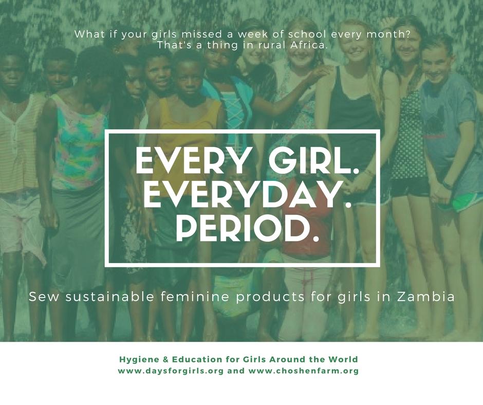 www.daysforgirls.org web post.jpg