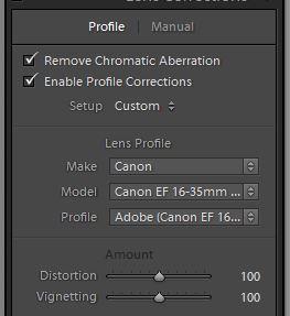 Lens correction.JPG