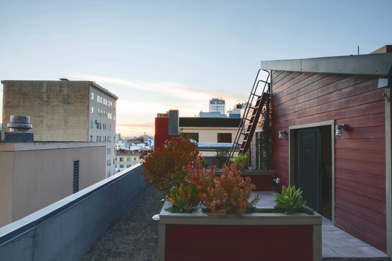 Tilden_Rooftop.jpeg