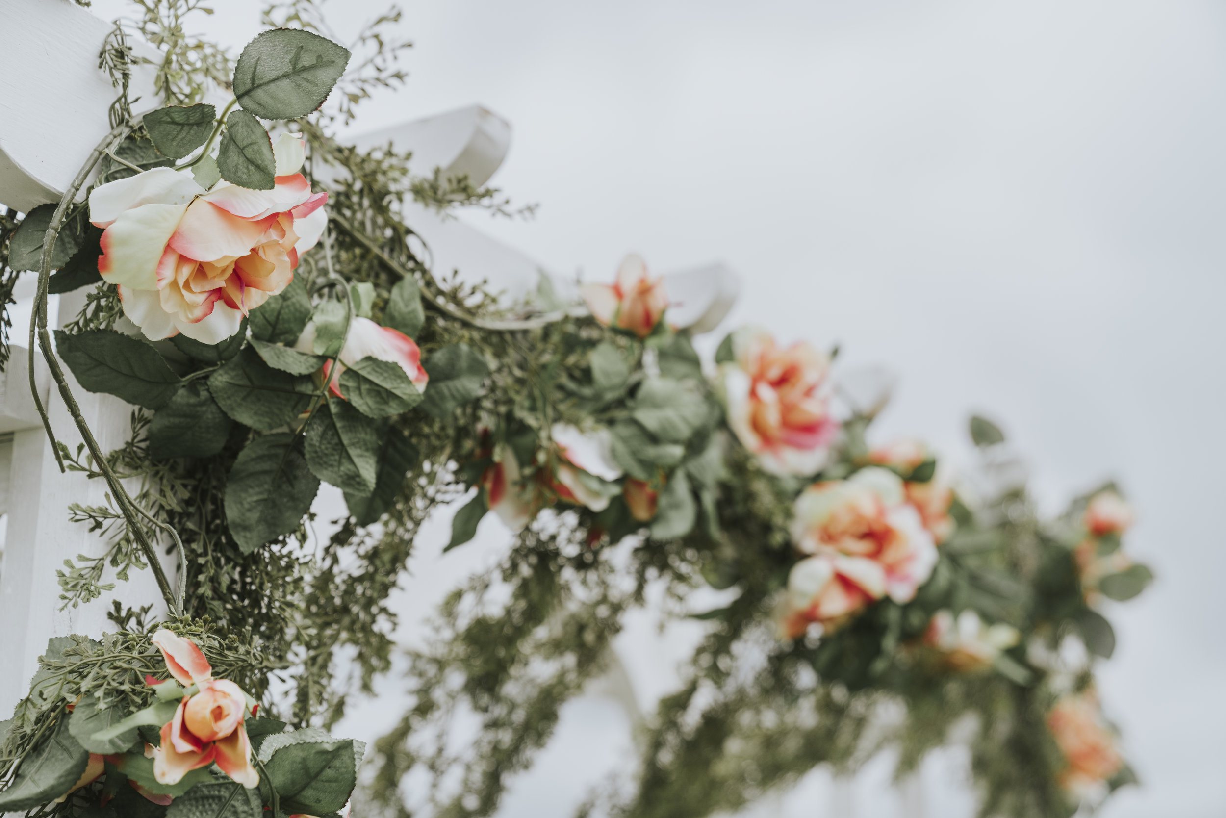 Wedding2017_Abbey_&Lucas_JPEGs (30 of 299).jpg