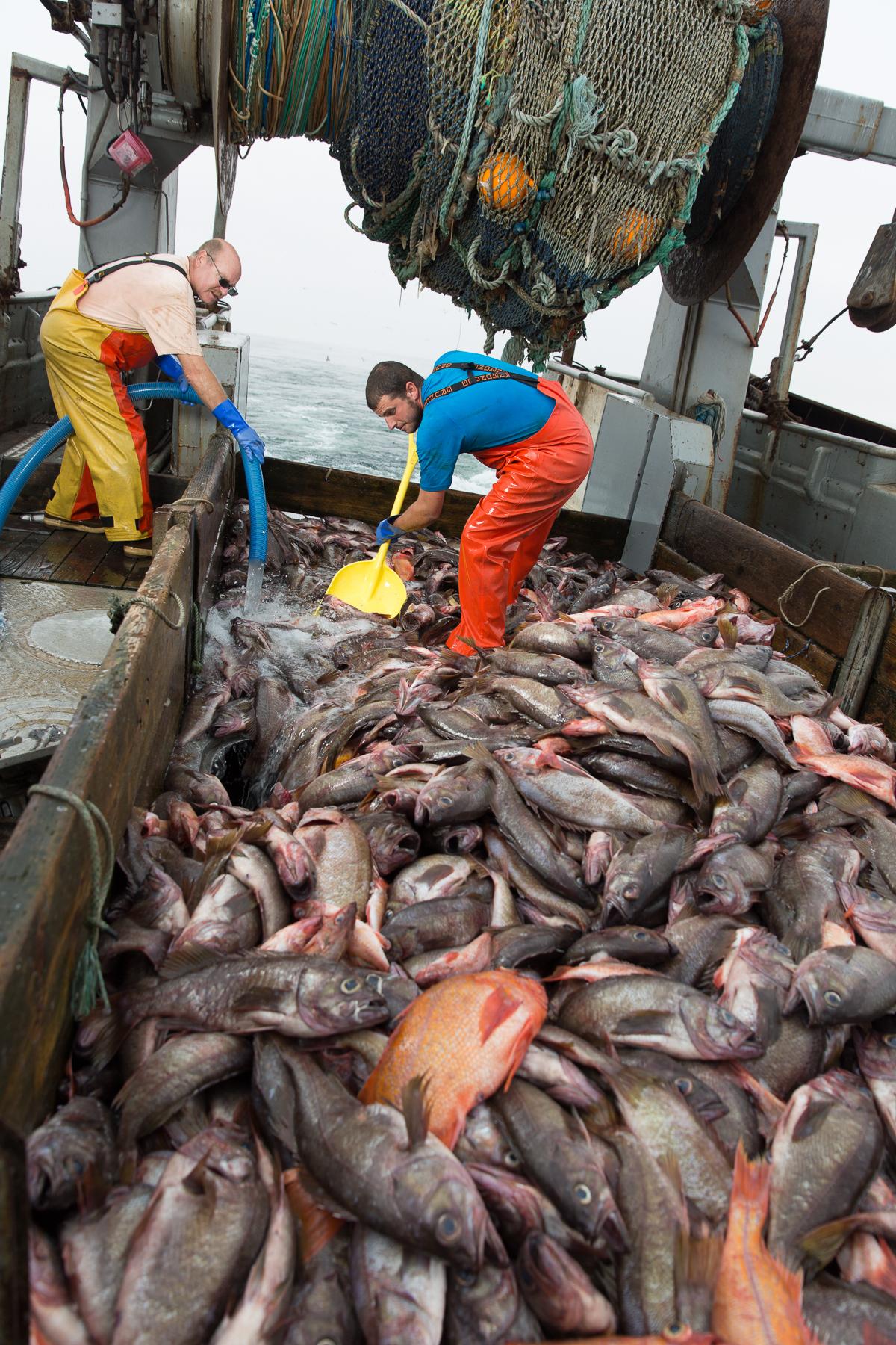 1709-Ocean Hunter Greg & Tom-171.jpg
