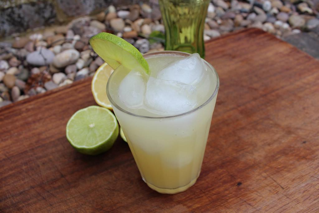 lemon-and-limeade.jpg