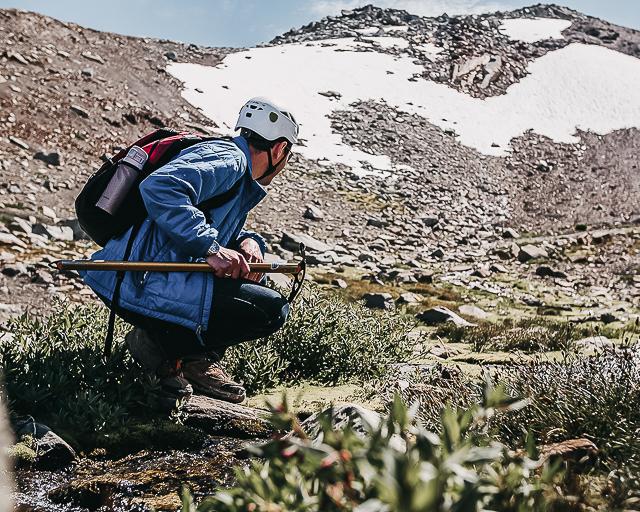 Glacier Discovery -