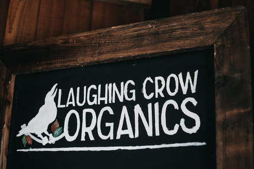 LGC+-+Laughing+Crow-+29+©Audrey+Thizy.2019.jpg