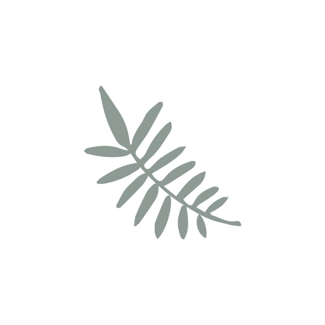 Leaf Size 1.png