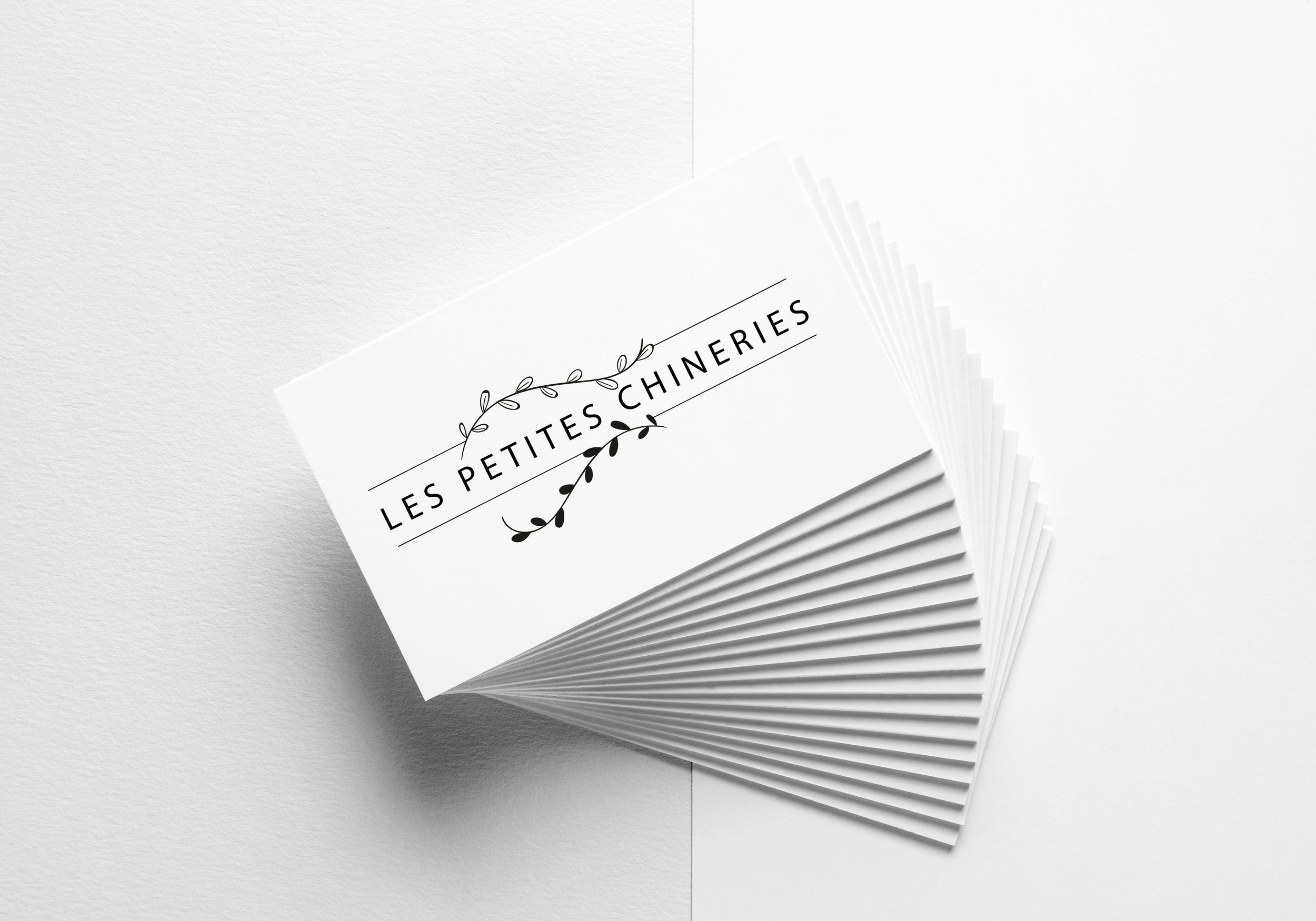Les petites chineries mock up cartes visite.jpg