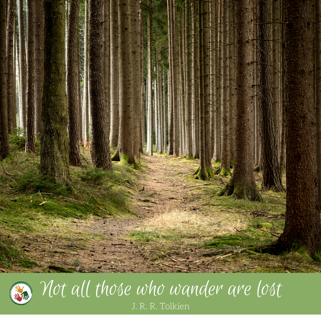 Not all those who wander are lost.png