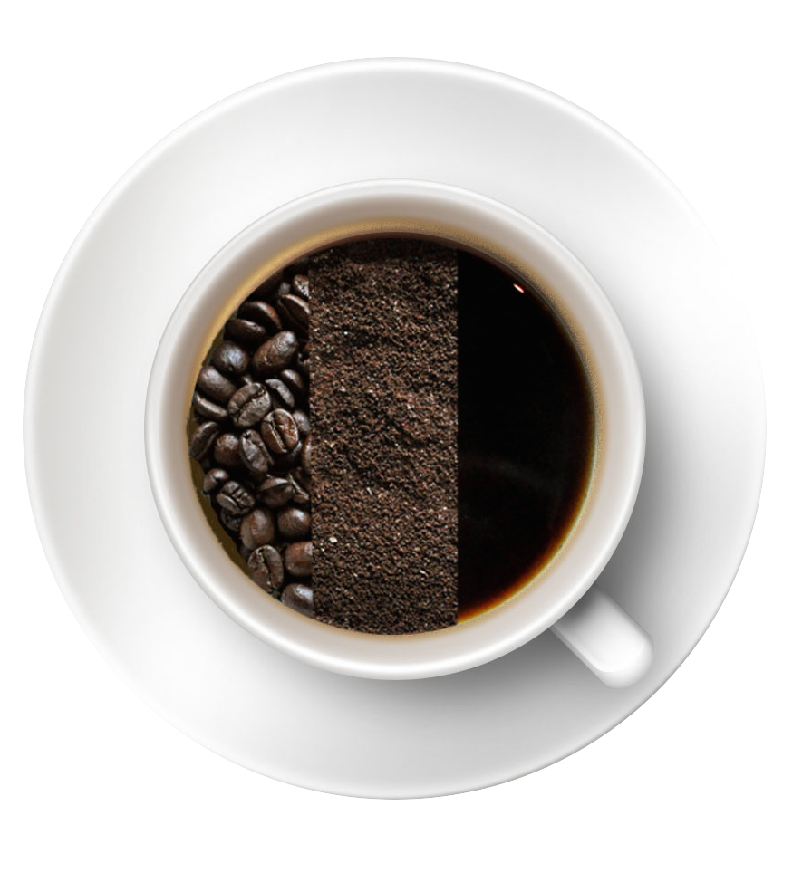 coffee-cup logo.png