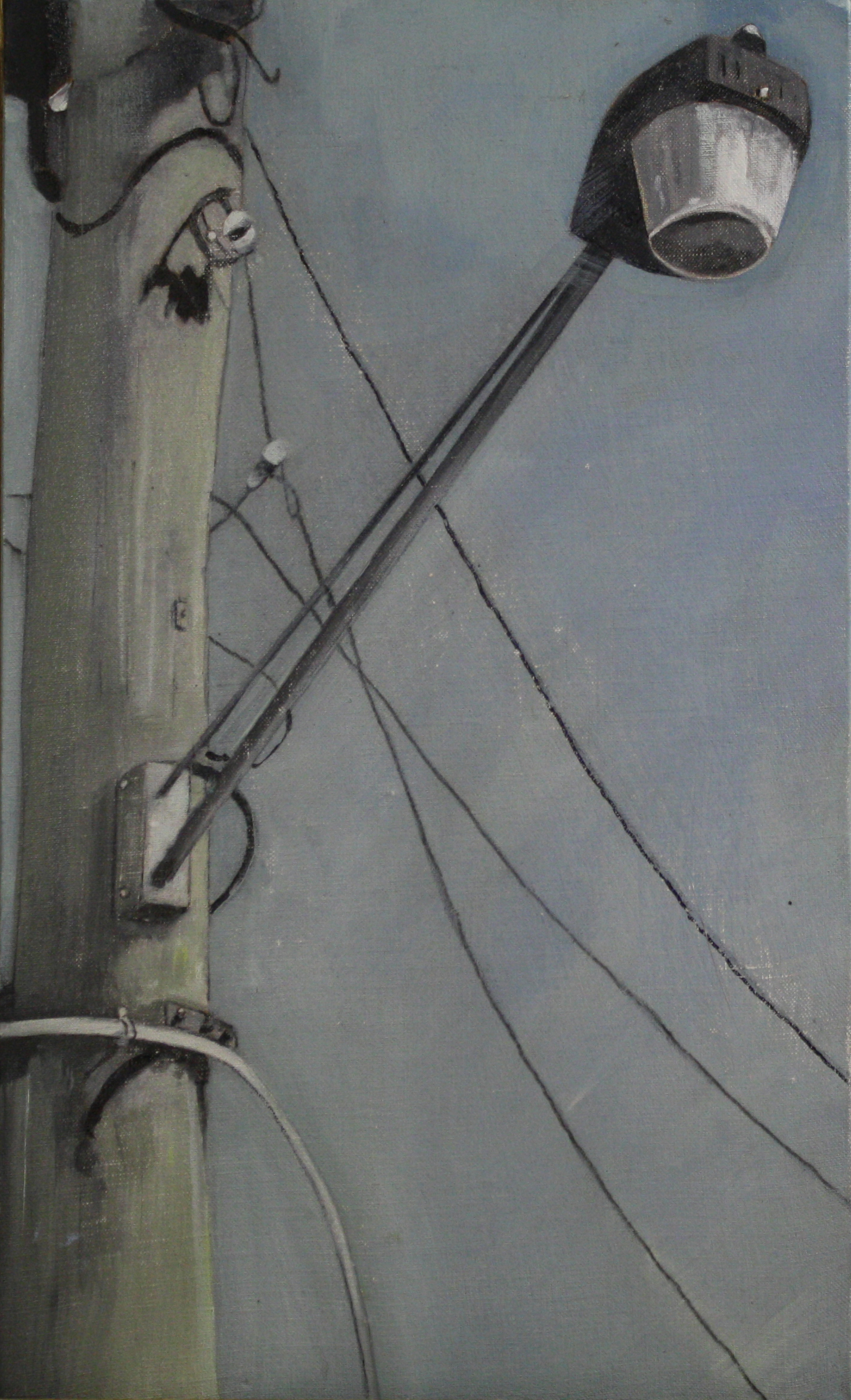 Stand Alone:  19356   2011, oil on canvas on hardboard  50 x 76 cm