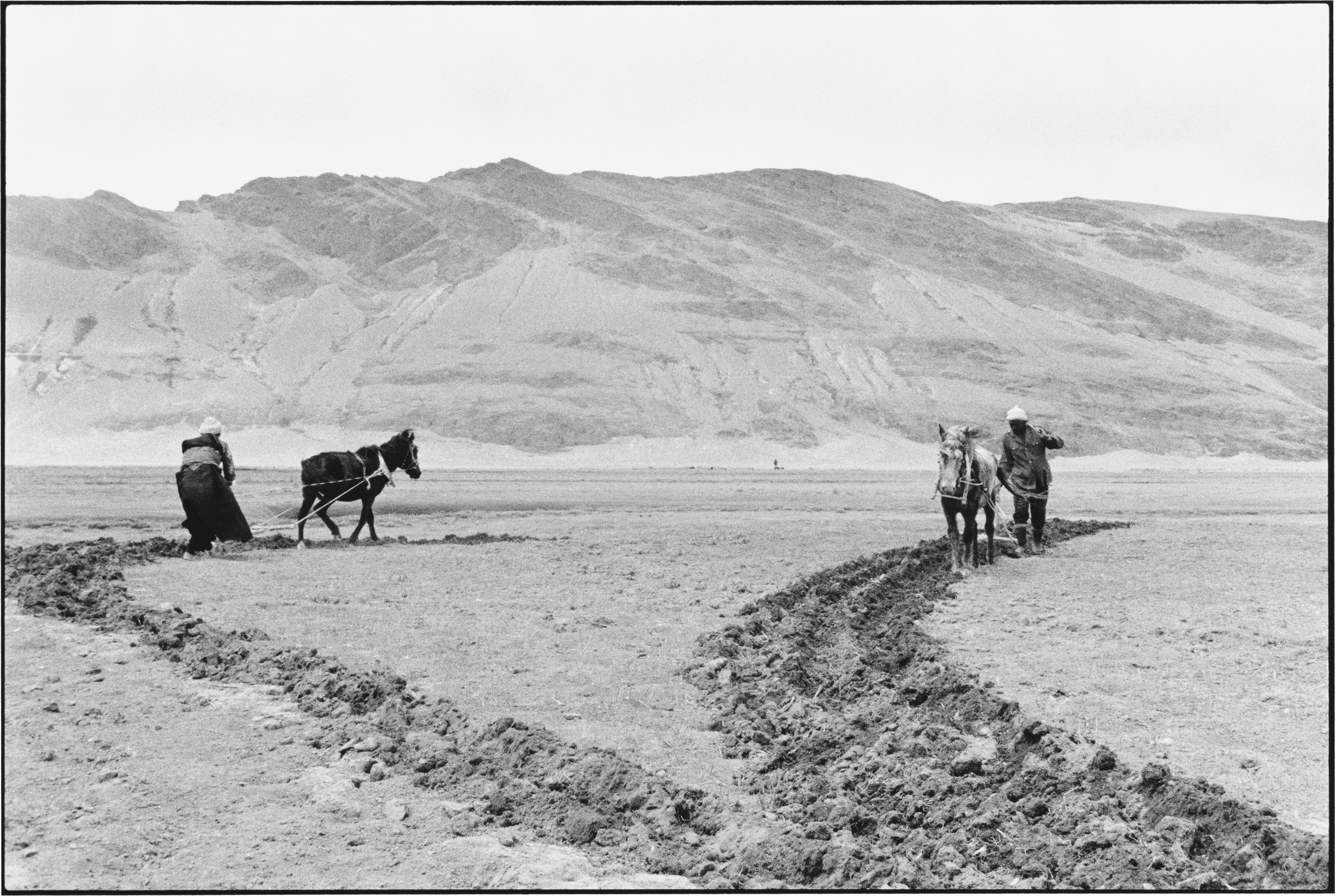 A Husband and Wife Plowing the Fields, Tibet