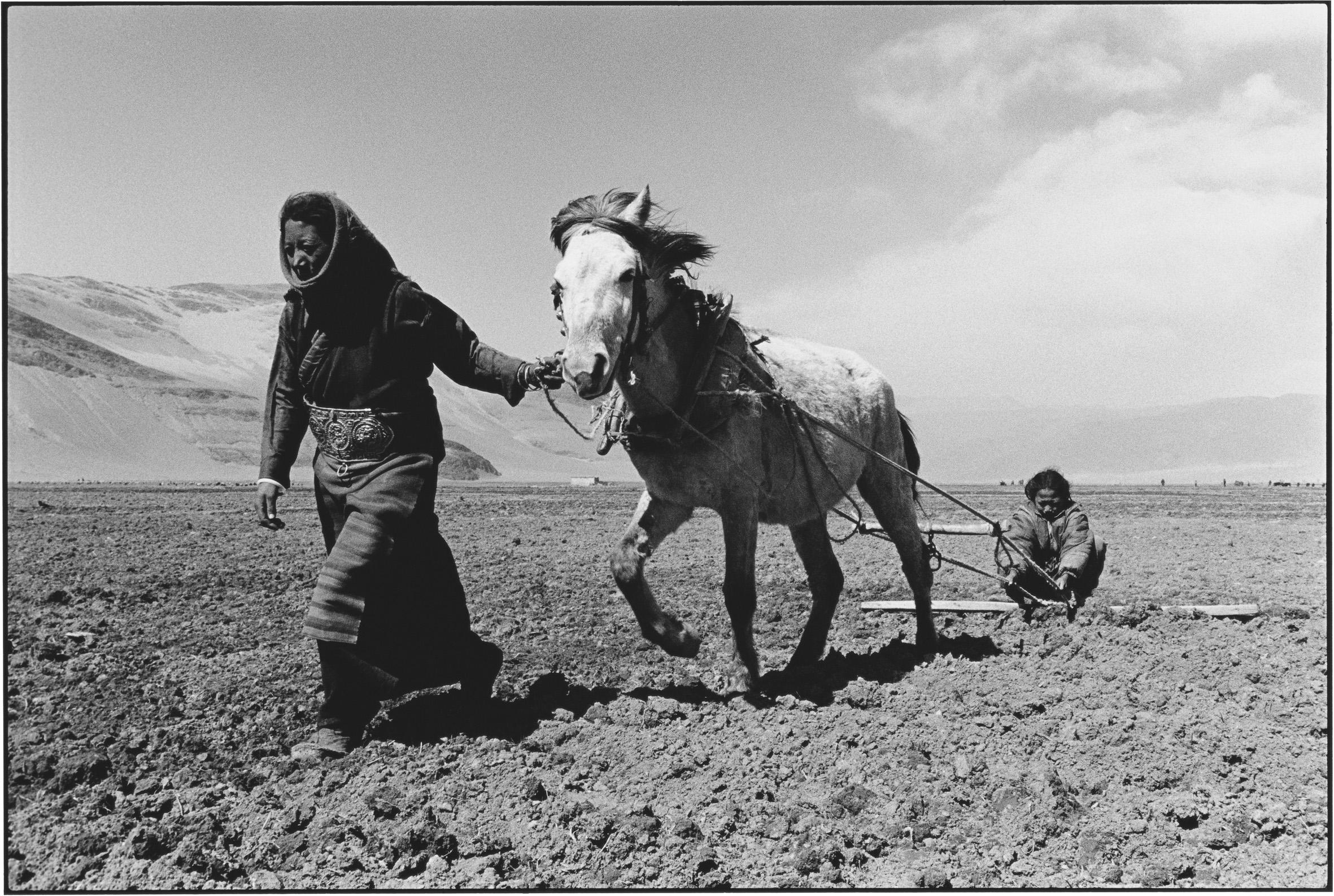 Sisters Sowing in Spring, Tibet