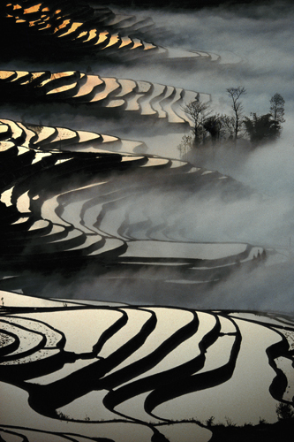 Terraced rice paddies in Yuanyang, Yunnan Province
