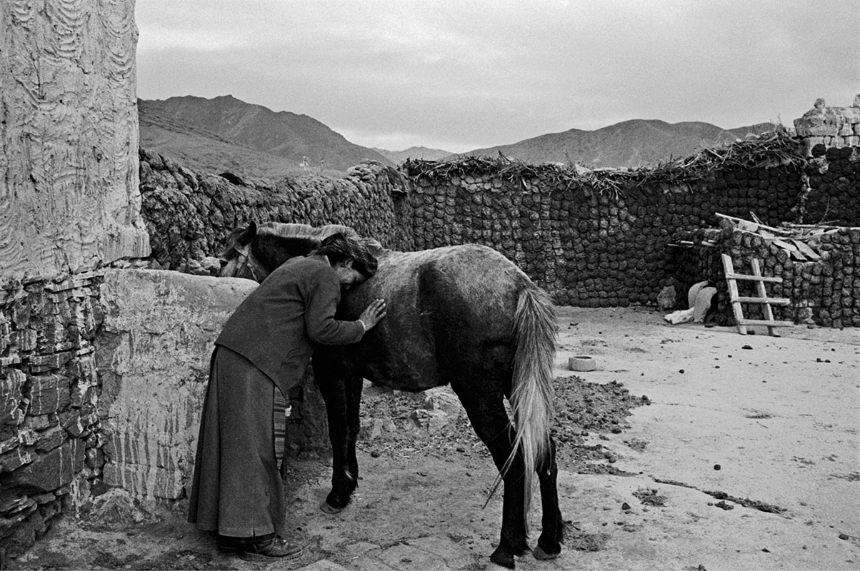 A woman expresses her gratitude to a horse, Tibet