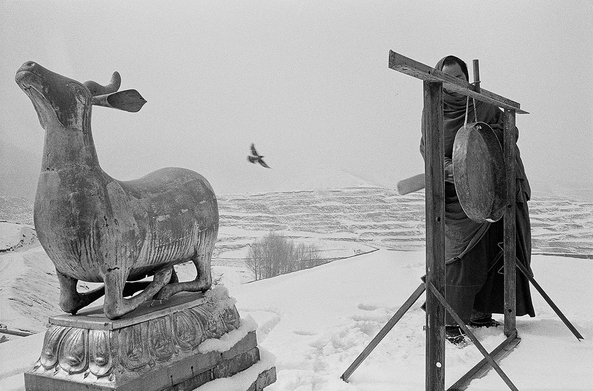 A holy deer, a flying bird, and a monk beating a gong, Qinghai