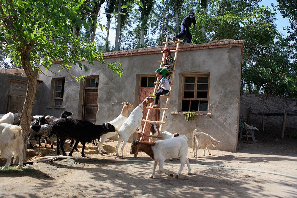 Gupur Metaniyaz (Uyghur) - The Taste of Home