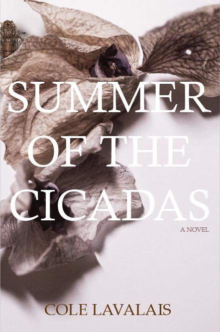 Summer of the Cicadas Book Cover.jpg