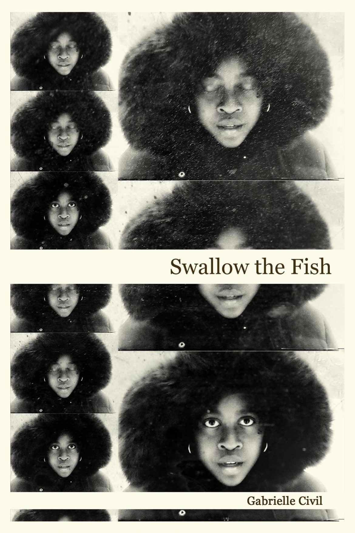 swallow-the-fish-cover.jpg