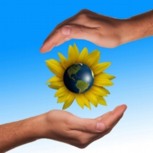 hands around sunflower & globe.jpg