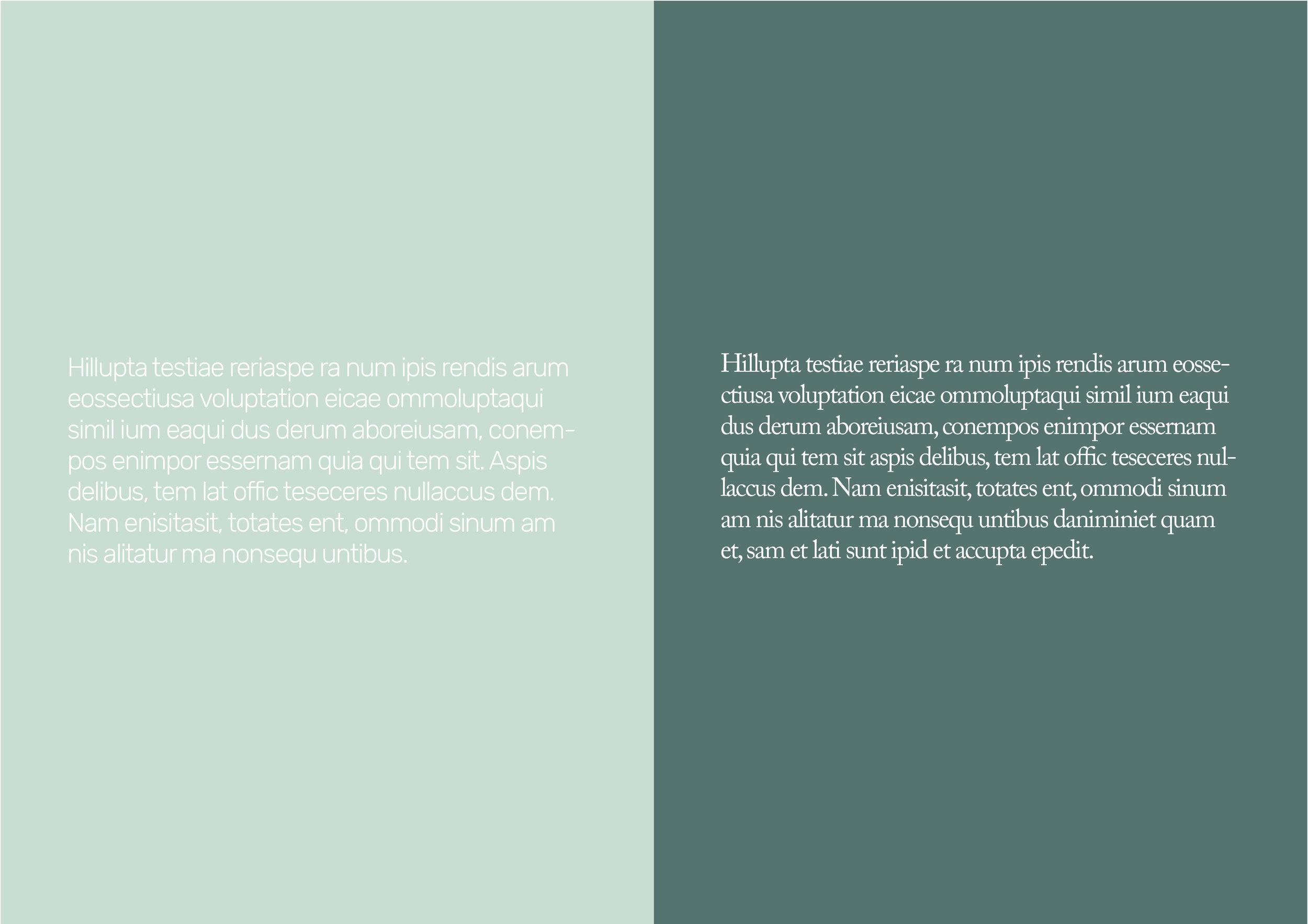 Typography ingress/ body —  Rubik/ Adobe Caslon Pro