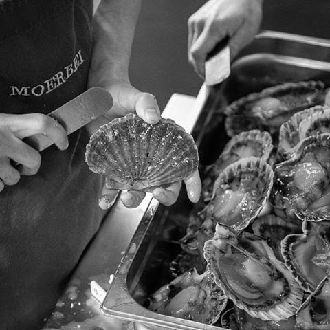 preparing scallop at the Michelin Star restaurant De Moerbei #cook #restaurant #kitchen #Food #blackandwhite #michelin #star #cuisine #work